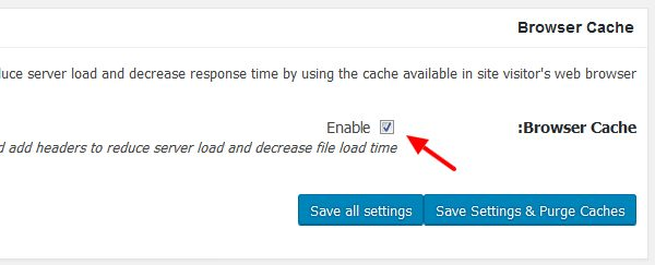 w3 total cache browser cache  - مجلة ووردبريس